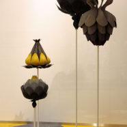 Коллекция мебели «Ботаника».